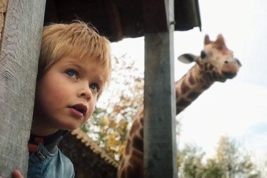Kinderkino: Mein Freund, die Giraffe